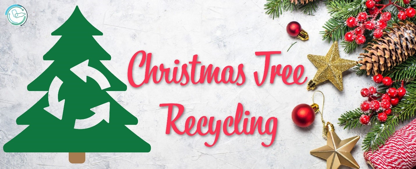 How To Recycle Christmas Trees In North Texas Dec 2019
